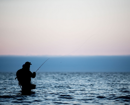 Fiskeri i Fjordlandet