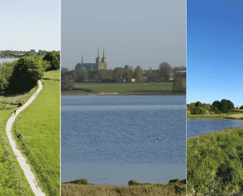 Guidet tur i Roskildes natur