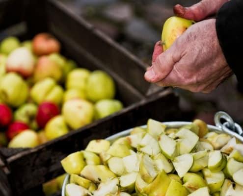 Den store æbledag i Købmandsgården, Roskilde