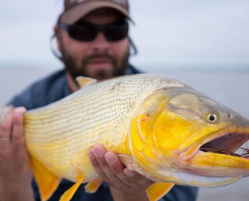 ROLK fiske